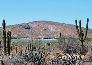 Der Norden von Baja California