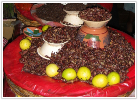 mexikanische kuche