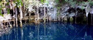 Cenote Yokdzonod Yucatan