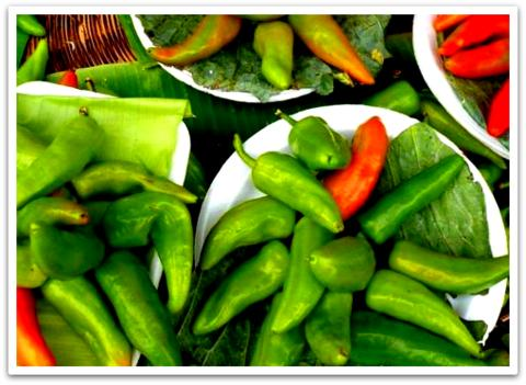 mexikanische Chillies