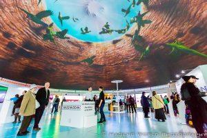 3D-Projektionen im Ausstellungspavillon