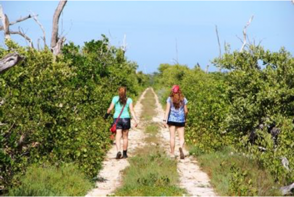 Wandern in Yucatán